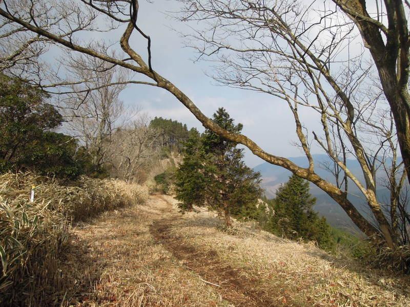 【コース紹介】近場でお気軽鞍岳トレラン(森林コース~女岳~鞍岳・ツームシ岳・孫岳ピストン~パノラマコース)