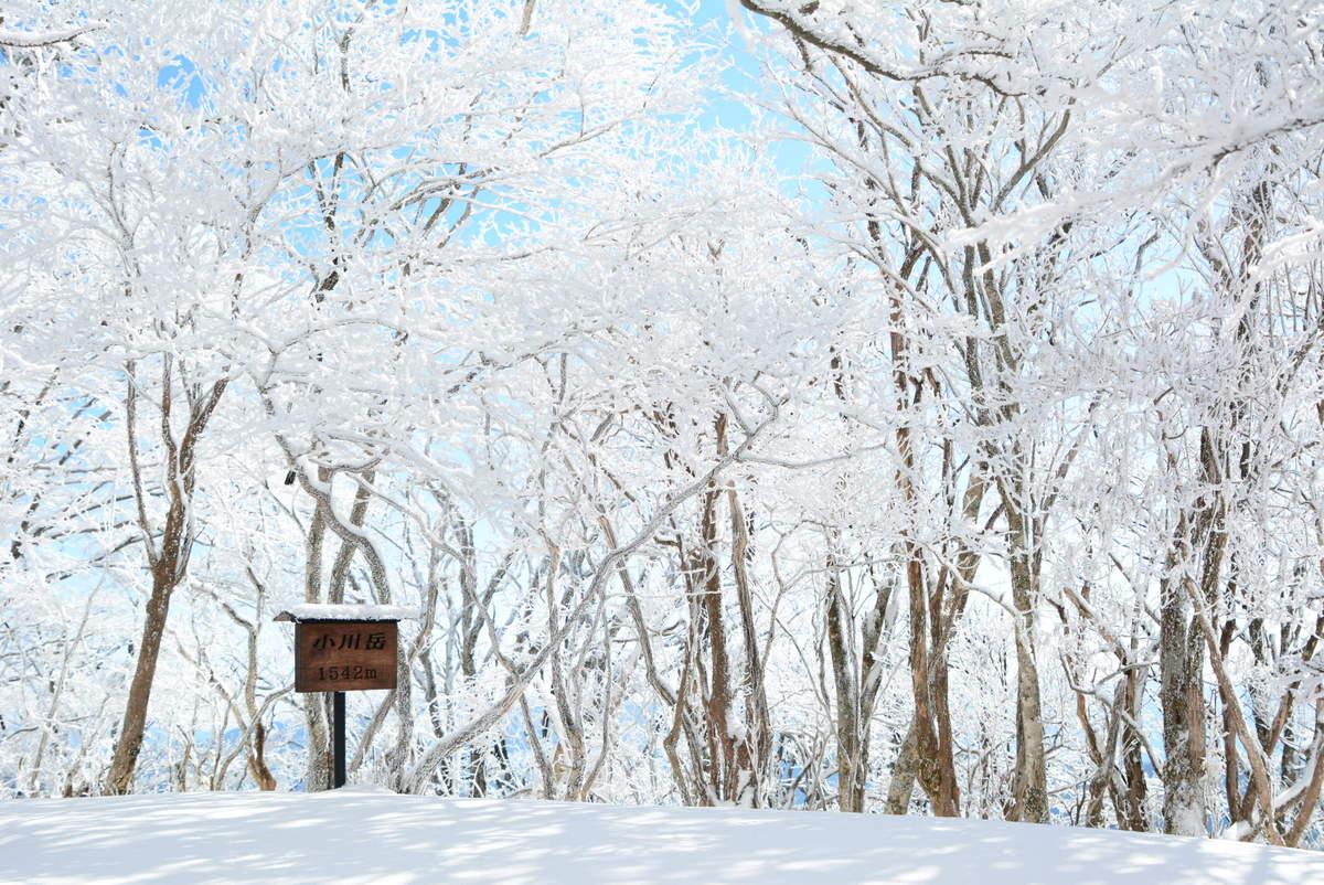 【登山】九州脊梁・小川岳でスノートレッキング
