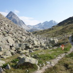 【レースレポート】スイスアイアントレイル2015(Swiss Irontrail-T201-)~当日編(CP2~CP6・SAMEDAN)~
